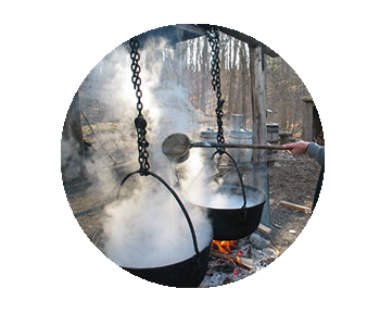 Cauldrons of boiling maple sap