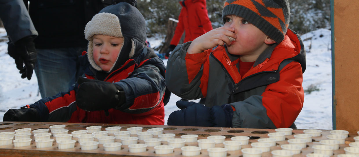 Two children tasting maple syrup